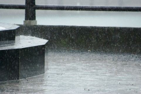 転職活動が雨の日